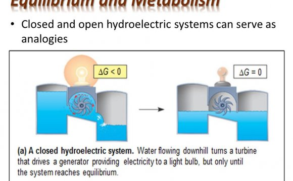 Closed and open hydroelectric