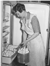 The Tennessee Valley Authority supplied electricity the very first time to 1000s of outlying residents into the 1930s. National workers journeyed to homes to teach residents how to use electrical appliances, including stoves, ovens, and refrigerators.